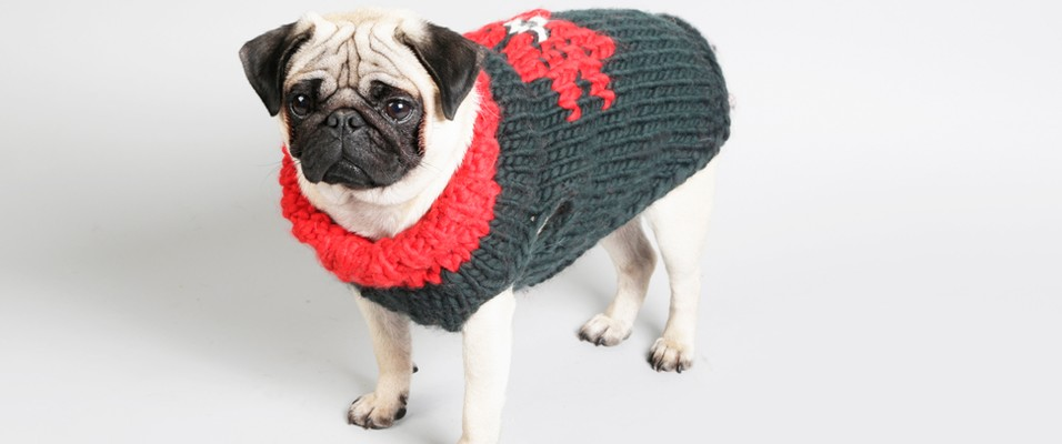 Free Hot Dawg Pattern | Knitting | WOOL AND THE GANG
