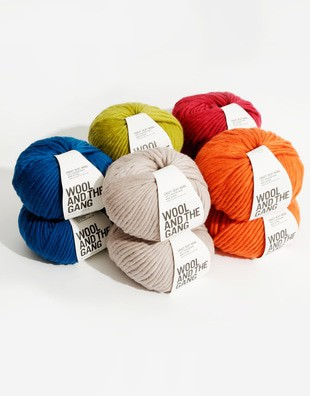 Crazy Sexy Wool Bundle - 16 Balls