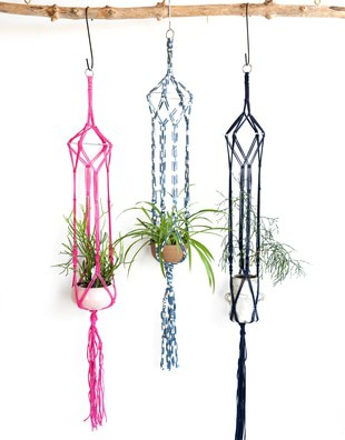 Jungle Love Plant Hanger