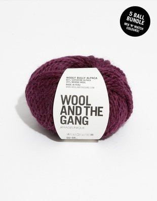 Wooly Bully Alpaca Bundle - 5 balls